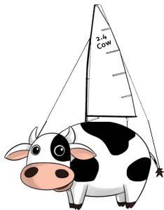 2.4 Cow